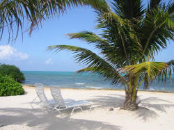 Grand Caymanian Beach